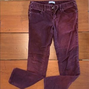 Free People Corduroy Maroon Pants